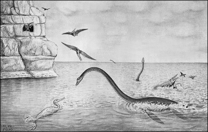 Living Plesiosaurs   Cryptozoology Research Team  Are Plesiosaurs Still Alive