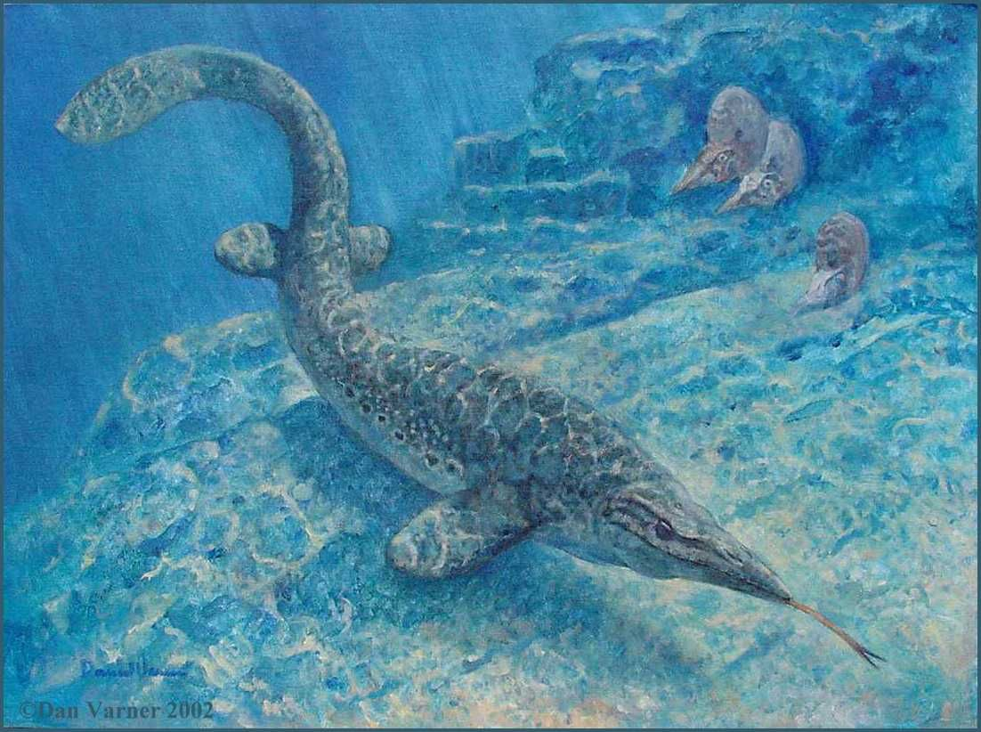 http://www.oceansofkansas.com/Mosa-Rapid/varnr23.jpg